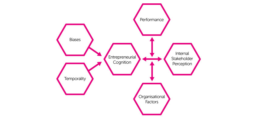 organisations, plasticity, diagram, rootbind